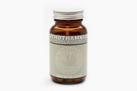 Lithothamnium calcareum