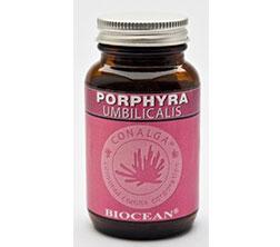 erboristeria-arcobaleno-alghe-marine-porphyra-umbilicalis