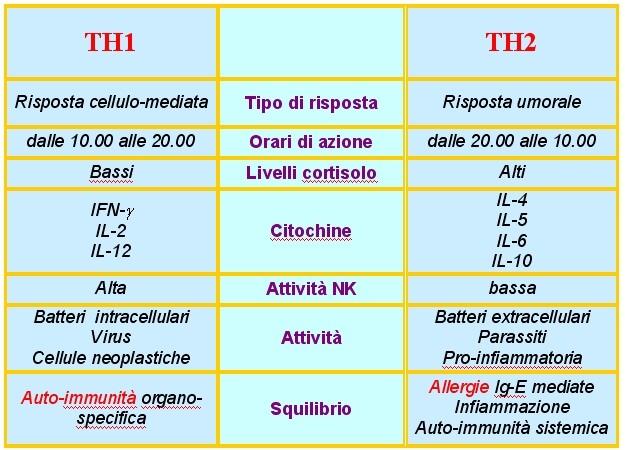 erboristeriarcobaleno allergie th1 e th2