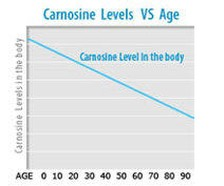erboristeriarcobaleno-benessere-salute-antiossidanti-schio-carnosina-miglioramento