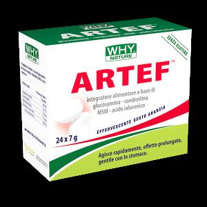 Artef_WHYnature_24buste