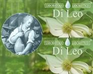 erboristeria-arcobaleno-schio-benessere-antistress-fiori-bach-analisi