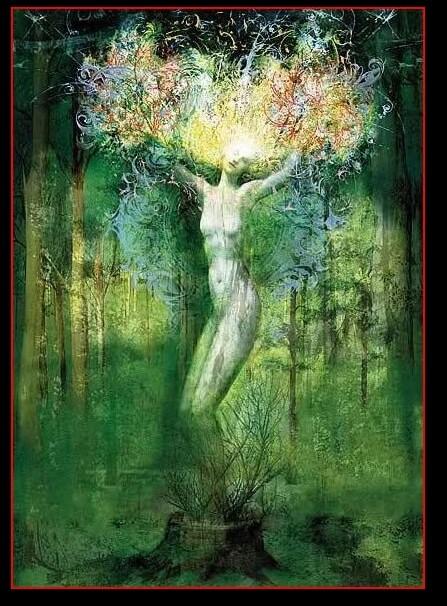 erboristeria-arcobaleno-schio-benessere-aromaterapia-prodotti-olio-essenziale-azione