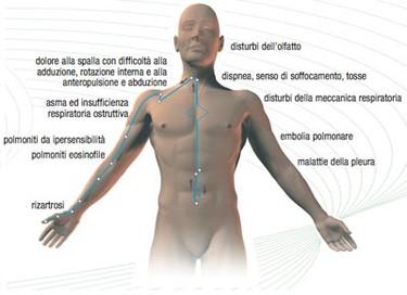erboristeria-arcobaleno-schio-benessere-attivatori-energetici-reayang-2P-applicazioni