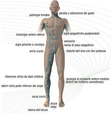 erboristeria-arcobaleno-schio-benessere-attivatori-energetici-reayang-cure