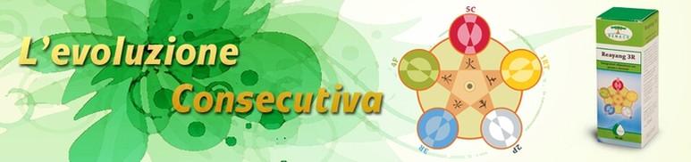 erboristeria-arcobaleno-schio-benessere-attivatori-energetici-reayang