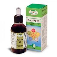 erboristeria-arcobaleno-schio-benessere-attivatori-energetici-reayang4F
