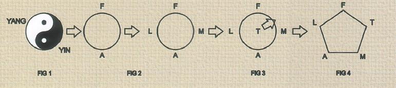 erboristeria-arcobaleno-schio-benessere-attivatori-energetici-yin-yang