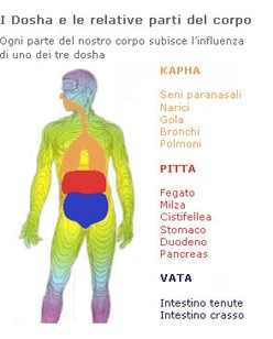 erboristeria-arcobaleno-schio-benessere-ayurveda-dosha