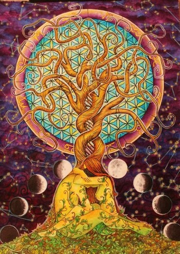 erboristeria-arcobaleno-schio-benessere-ayurveda-organismo-natura