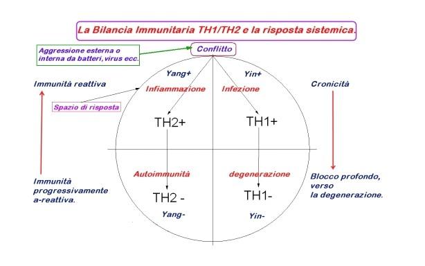 boristeria-arcobaleno-schio-benessere-micoterapia-bilancia-immunitaria