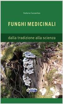 boristeria-arcobaleno-schio-benessere-micoterapia-funghi-medicinali