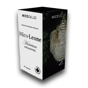 erboristeria-arcobaleno-schio-benessere-micoterapia-cioccolato-micoleone