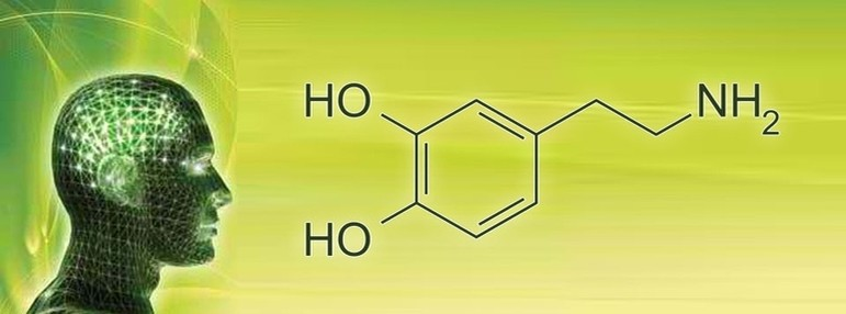 erboristeria-arcobaleno-valdagno-schio-sup_onc-fito-molecola_uomo