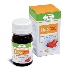 lipo320