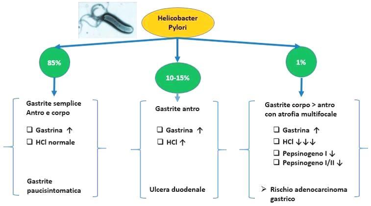 helicobacter-pylori-it-000