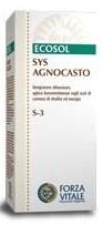 agnocasto12_-_copia