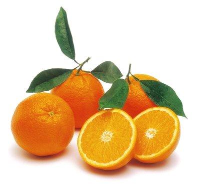 citrus-oranges